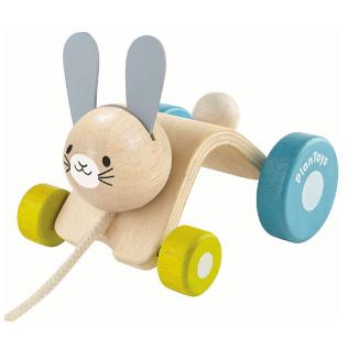 Plan Toys Push & Pull