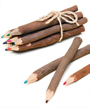 Namaste 10 Twig Pencils