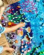 Enfys Coral Reef ImagiMus