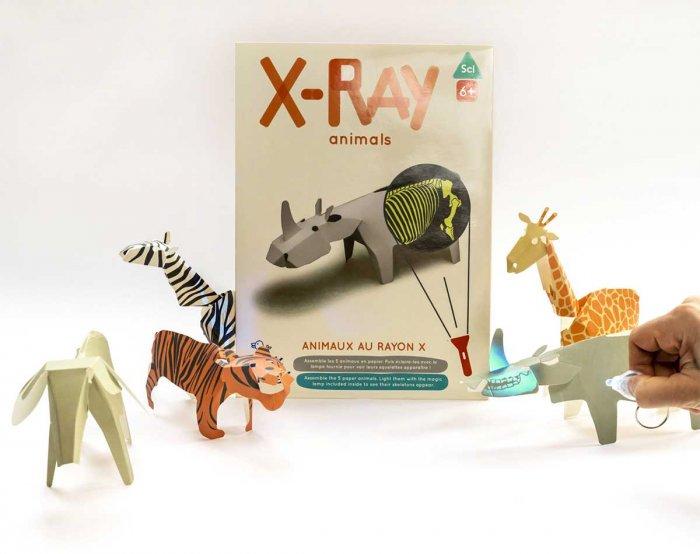 Koa Koa X-Ray Animals