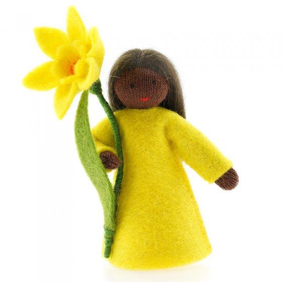 Ambrosius Daffodil Fairy Black Skin 8-10cm