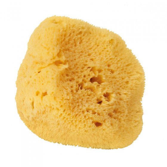 Croll & Denecke Silk Mediterranean Sponge