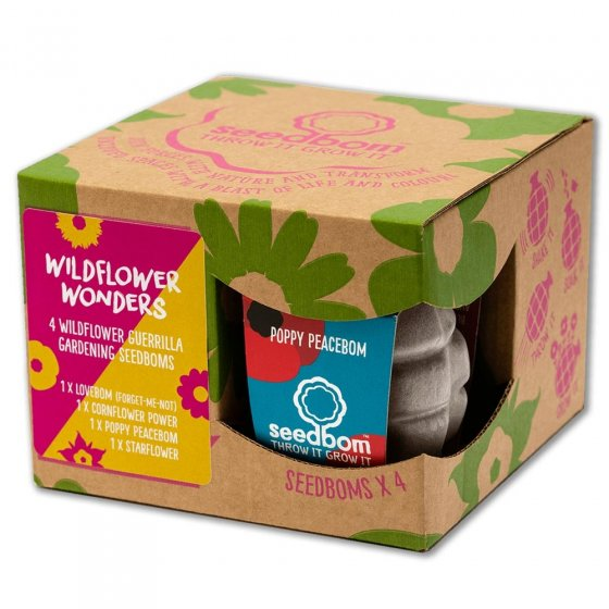 Kabloom Wildflower Wonders Gift Box