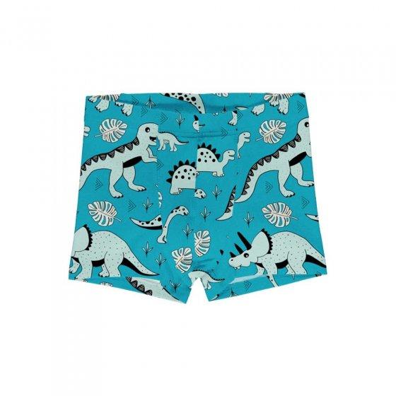 Meyadey Dino Forest Boxer Shorts