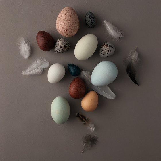 Moon Picnic wooden birds egg toy set on a grey background