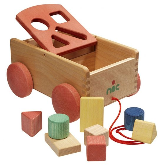 Nic Carriage With Forms Shape Sorter