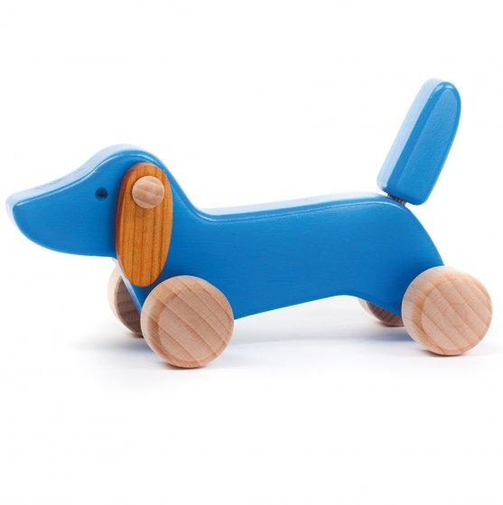 Bajo Blue Dachshund Puppy