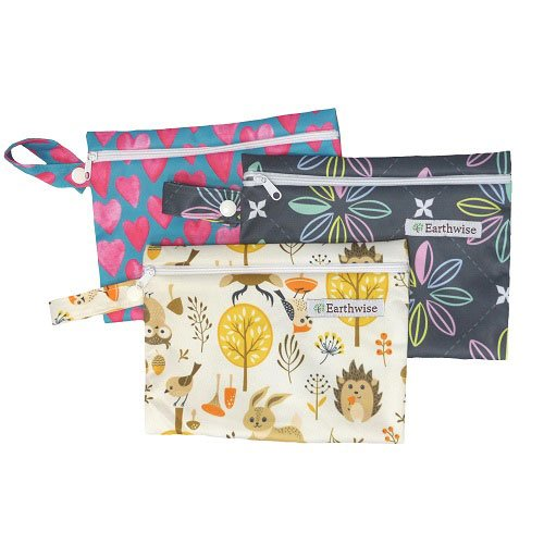 Earthwise CSP Wet Purse Bag