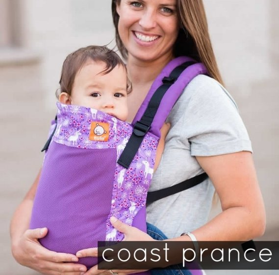 Tula Standard Baby Carrier - Coast Prance