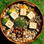 Hellion Toys plastic-free wooden vowel cubes in a round pot filled with small pebbles and golden leaves
